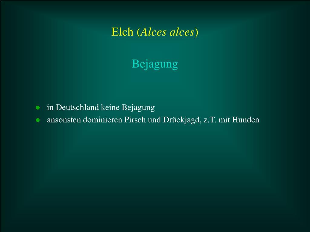 in Deutschland keine Bejagung