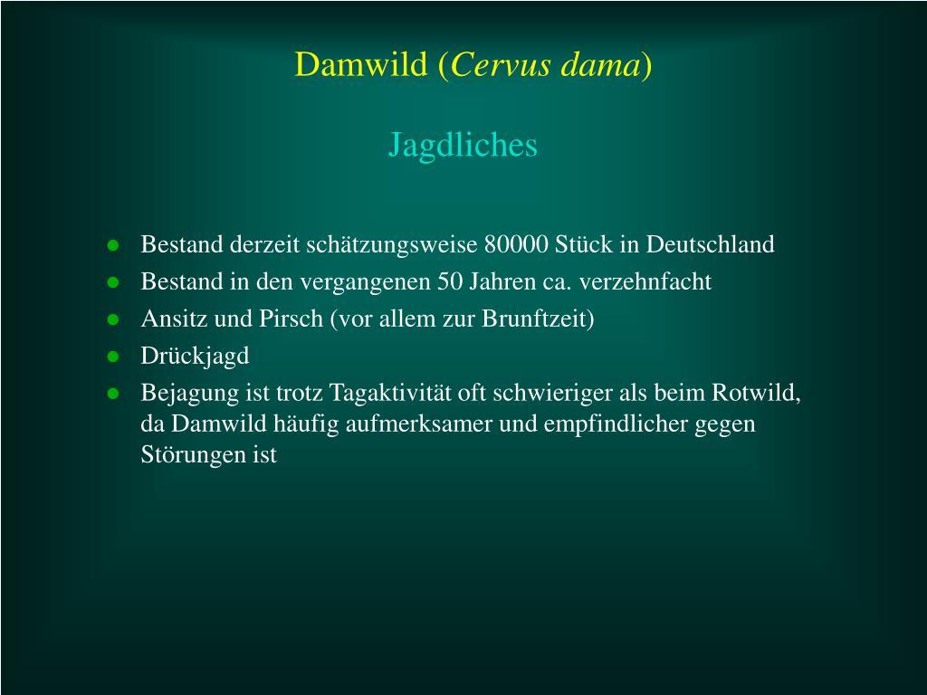Bestand derzeit schätzungsweise 80000 Stück in Deutschland