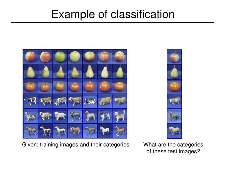 Example of classification
