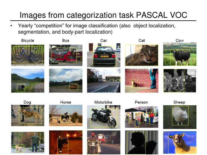 Images from categorization task PASCAL VOC