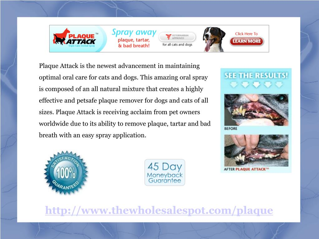 Plaque Attack is the newest advancement in maintaining optimal oral care for cats and dogs. This amazing oral spray is composed of an all natural mixture that creates a highly effective and petsafe plaque remover for dogs and cats of all sizes. Plaque Attack is receiving acclaim from pet owners worldwide due to its ability to remove plaque, tartar and bad breath with an easy spray application.