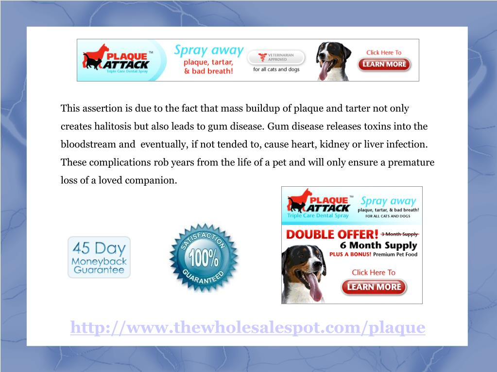 This assertion is due to the fact that mass buildup of plaque and tarter not only creates halitosis but also leads to gum disease. Gum disease releases toxins into the bloodstream and  eventually, if not tended to, cause heart, kidney or liver infection. These complications rob years from the life of a pet and will only ensure a premature loss of a loved companion.