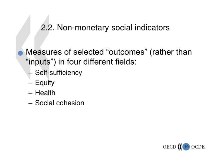 2.2. Non-monetary social indicators