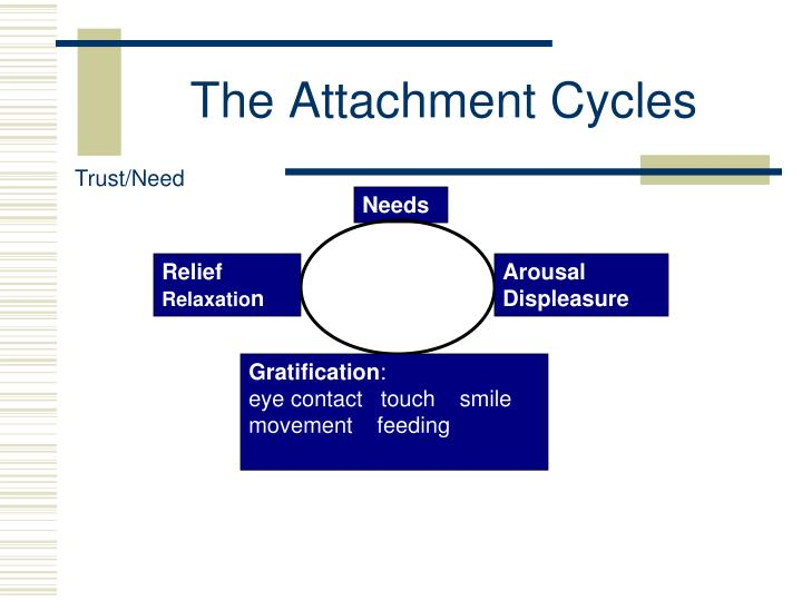 The Attachment Cycles