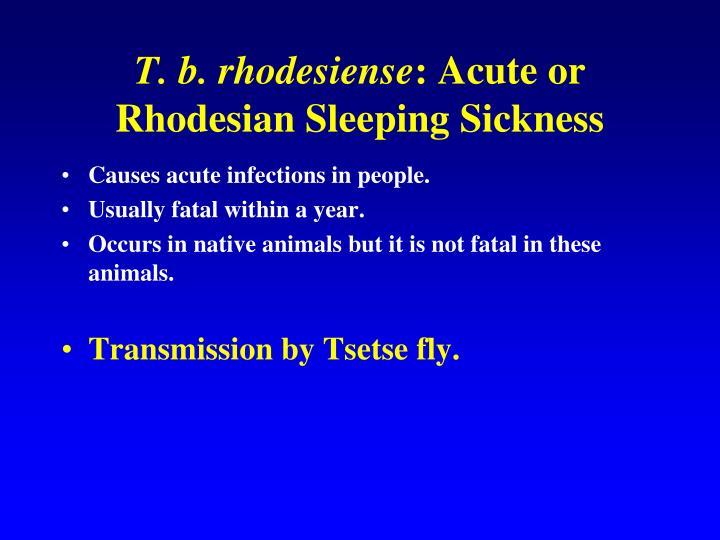 T. b. rhodesiense
