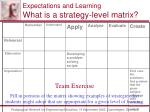expectations and learning what is a strategy level matrix85