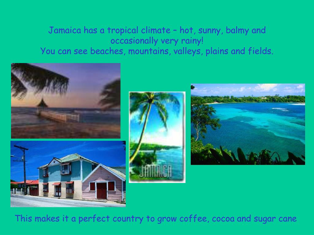 Jamaica has a tropical climate – hot, sunny, balmy and occasionally very rainy!