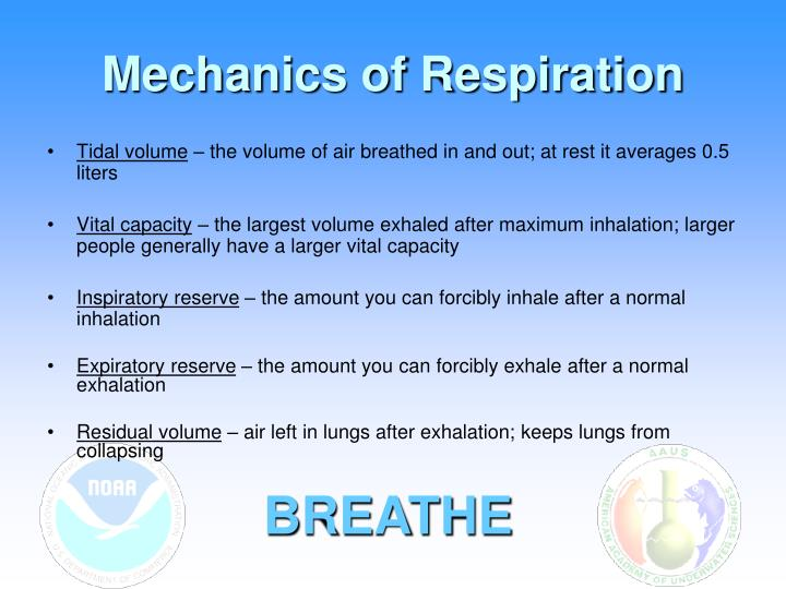 Mechanics of Respiration