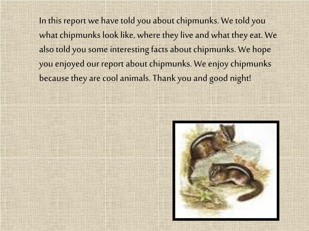 In this report we have told you about chipmunks. We told you what chipmunks look like, where they live and what they eat. We also told you some interesting facts about chipmunks. We hope you enjoyed our report about chipmunks. We enjoy chipmunks because they are cool animals. Thank you and good night!