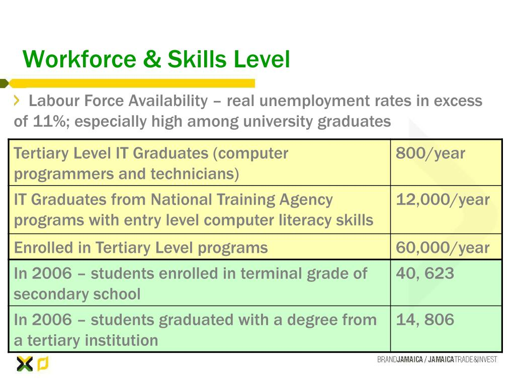 Workforce & Skills Level