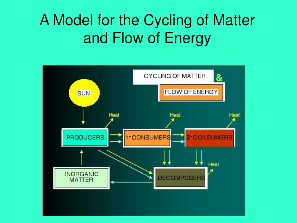 A Model for the Cycling of Matter and Flow of Energy