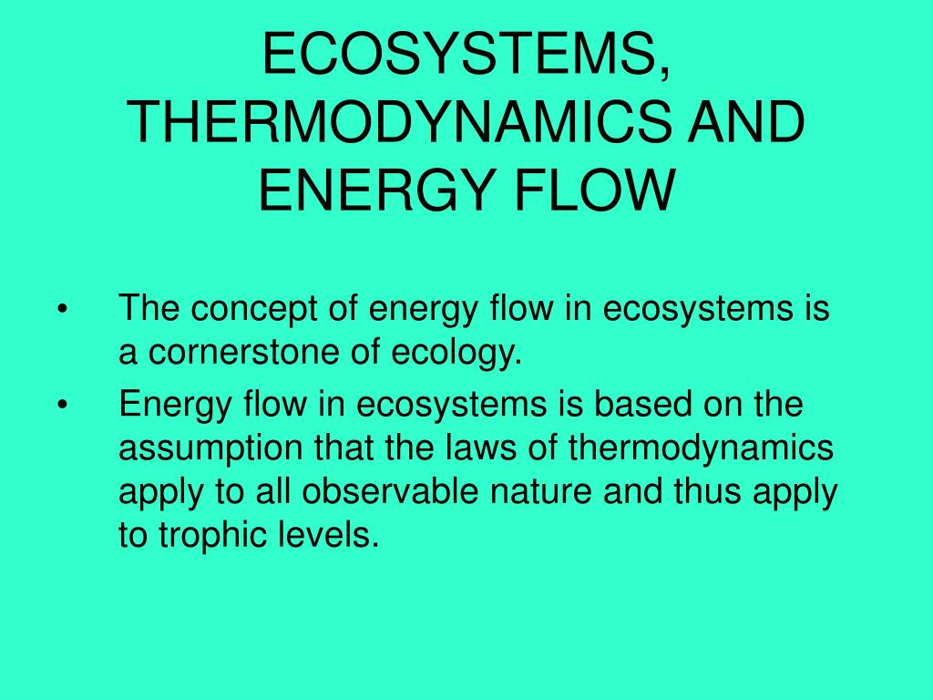 ECOSYSTEMS, THERMODYNAMICS AND ENERGY FLOW