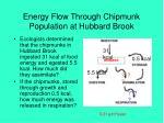 energy flow through chipmunk population at hubbard brook17