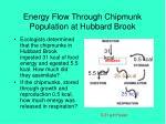 energy flow through chipmunk population at hubbard brook19
