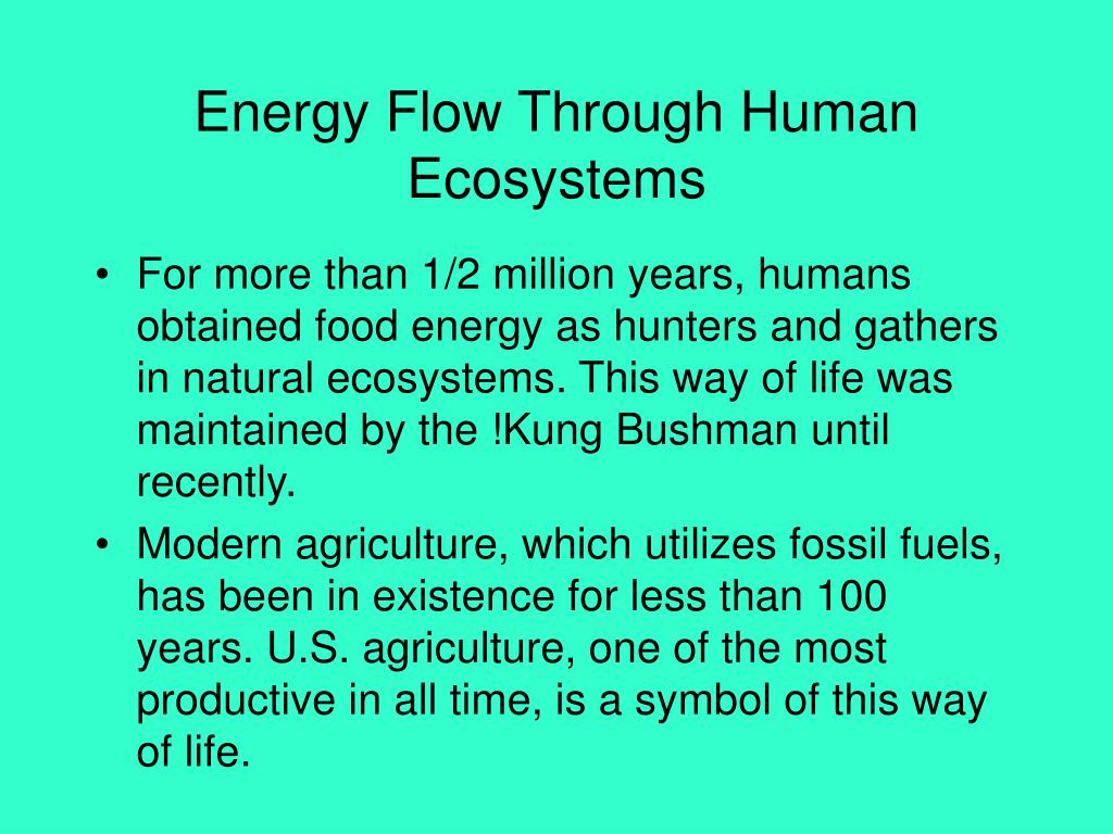 Energy Flow Through Human Ecosystems