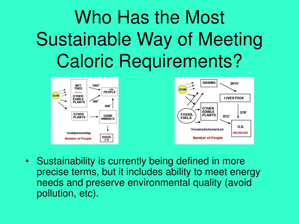 Who Has the Most Sustainable Way of Meeting Caloric Requirements?