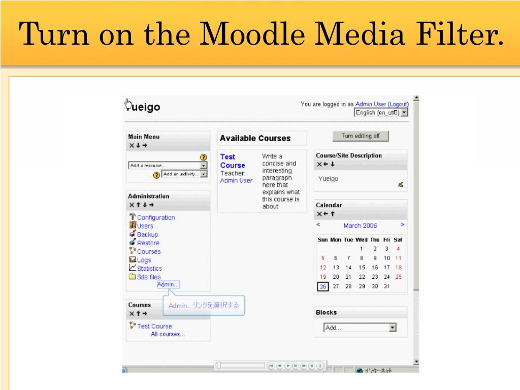 Turn on the Moodle Media Filter.
