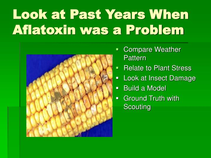 Look at Past Years When Aflatoxin was a Problem