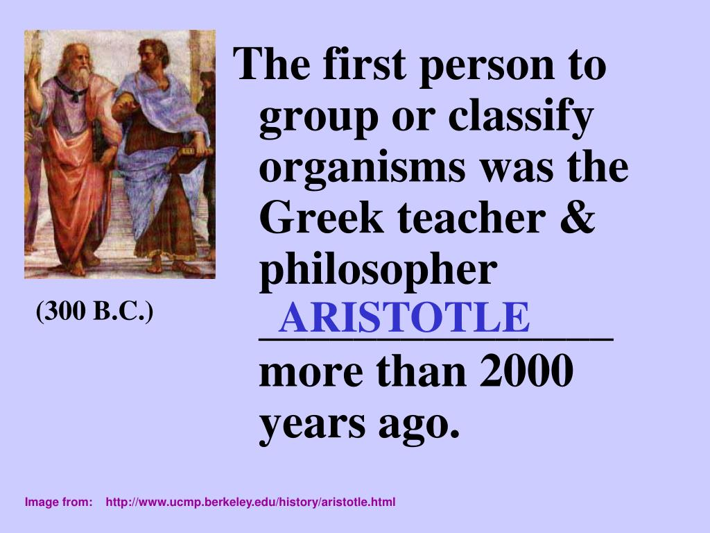 The first person to group or classify organisms was the Greek teacher & philosopher _______________