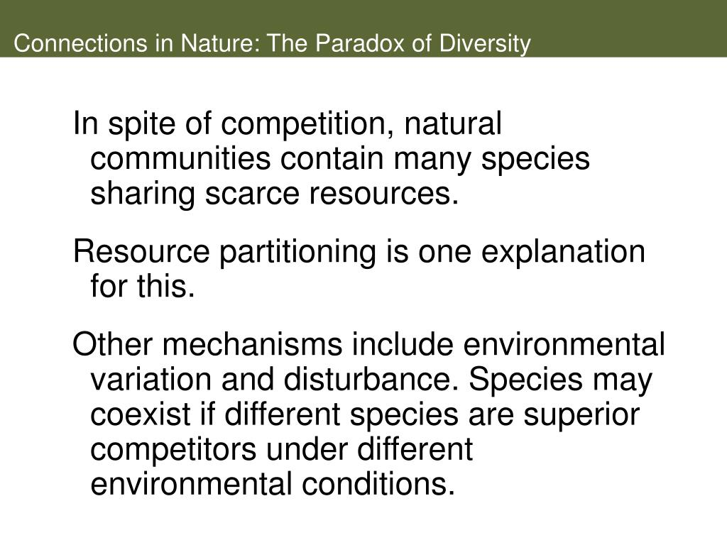Connections in Nature: The Paradox of Diversity