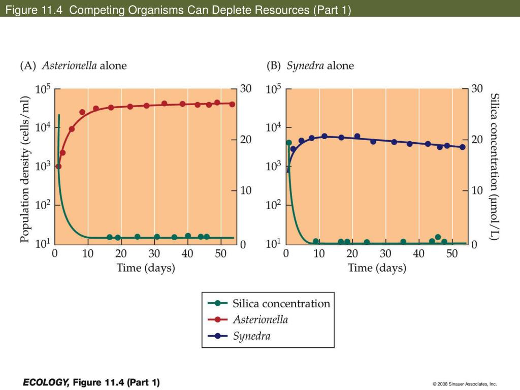 Figure 11.4  Competing Organisms Can Deplete Resources (Part 1)