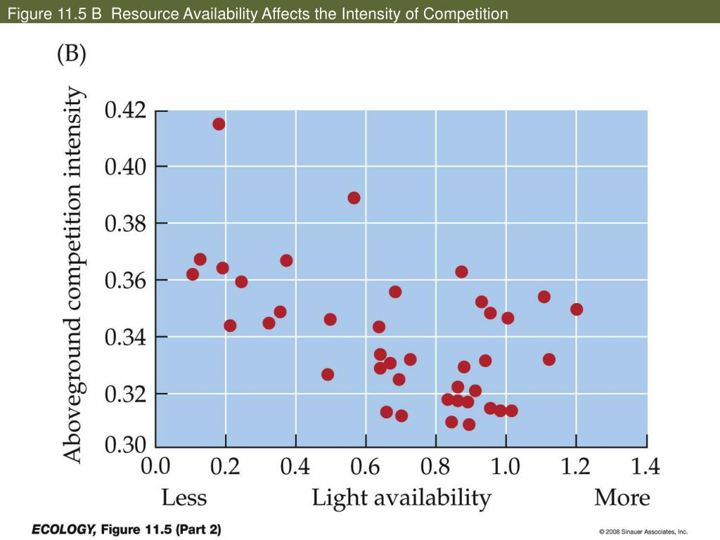 Figure 11.5 B  Resource Availability Affects the Intensity of Competition