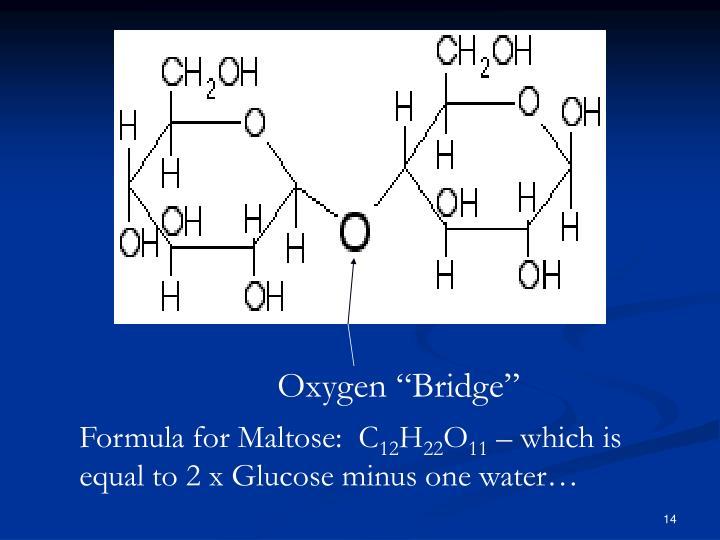 "Oxygen ""Bridge"""