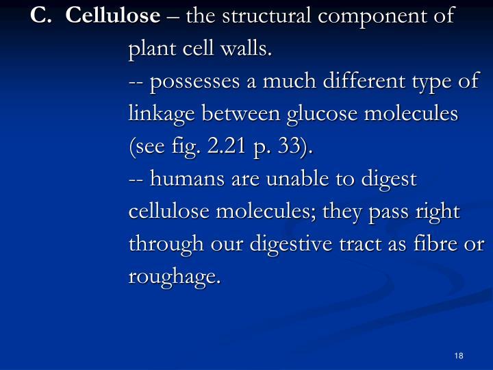 C.  Cellulose