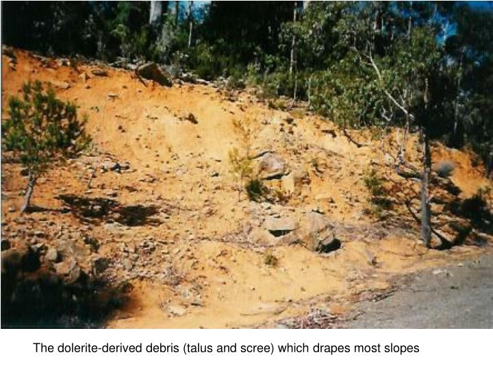 The dolerite-derived debris (talus and scree) which drapes most slopes