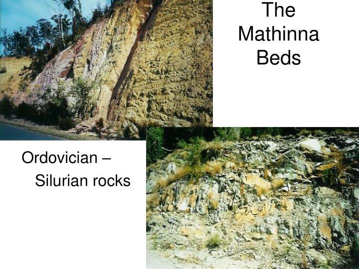 The Mathinna Beds