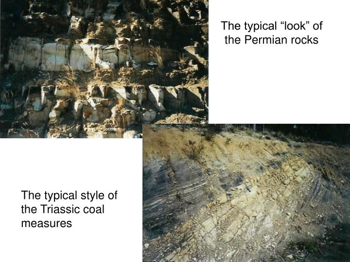 "The typical ""look"" of the Permian rocks"