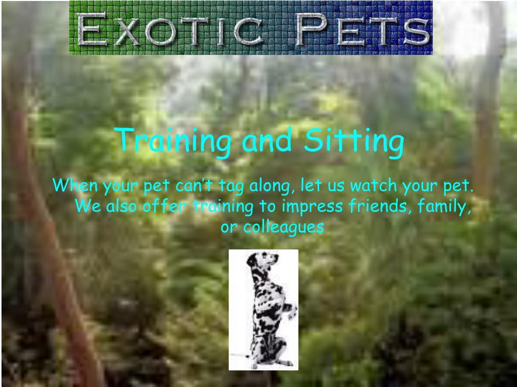 Training and Sitting