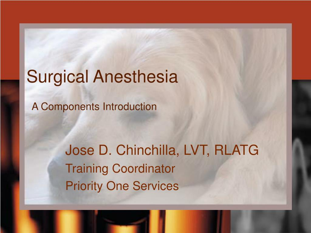 Surgical Anesthesia