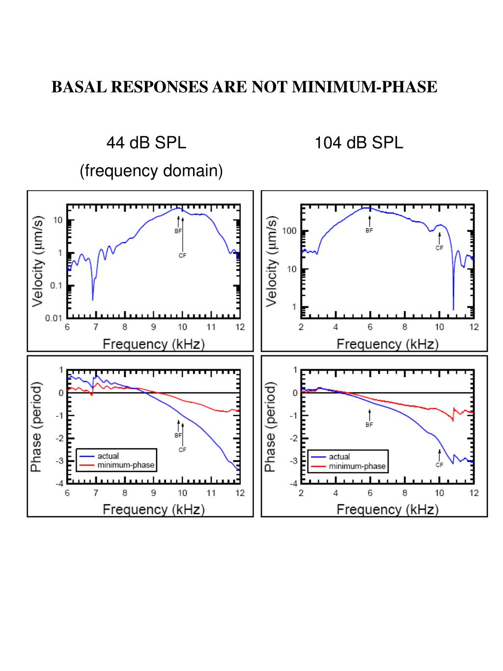 BASAL RESPONSES ARE NOT MINIMUM-PHASE