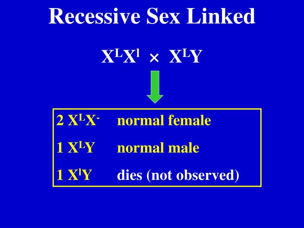 Recessive Sex Linked