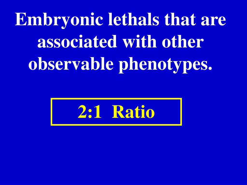 Embryonic lethals that are associated with other observable phenotypes.