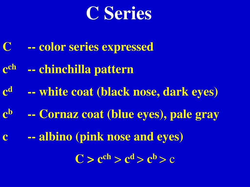 C Series