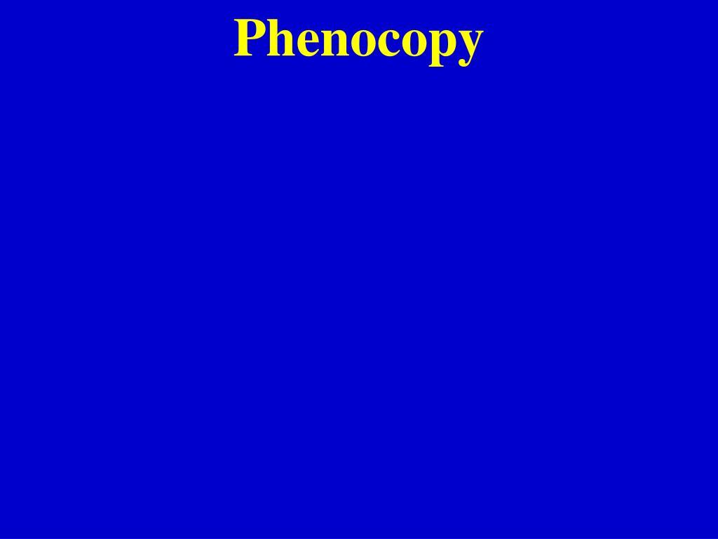 Phenocopy
