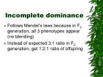 incomplete dominance11
