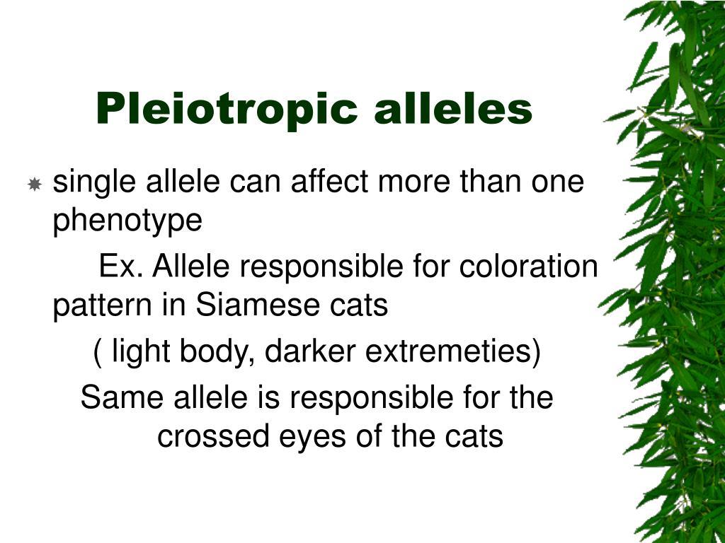 Pleiotropic alleles