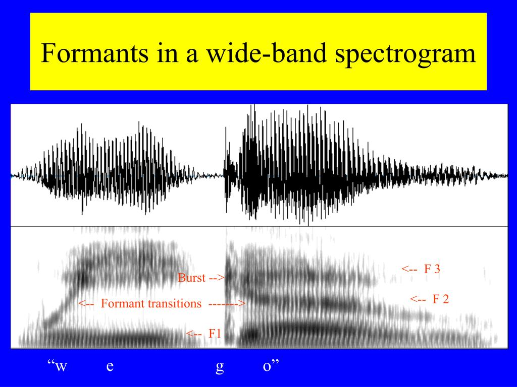 Formants in a wide-band spectrogram