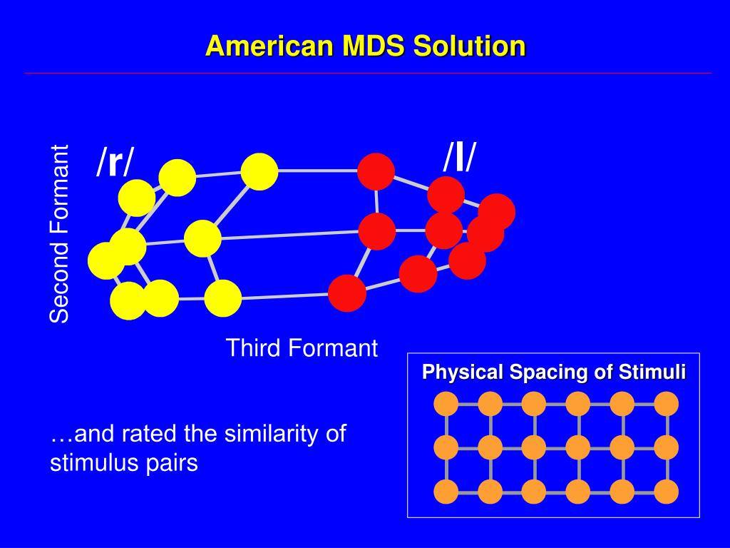American MDS Solution