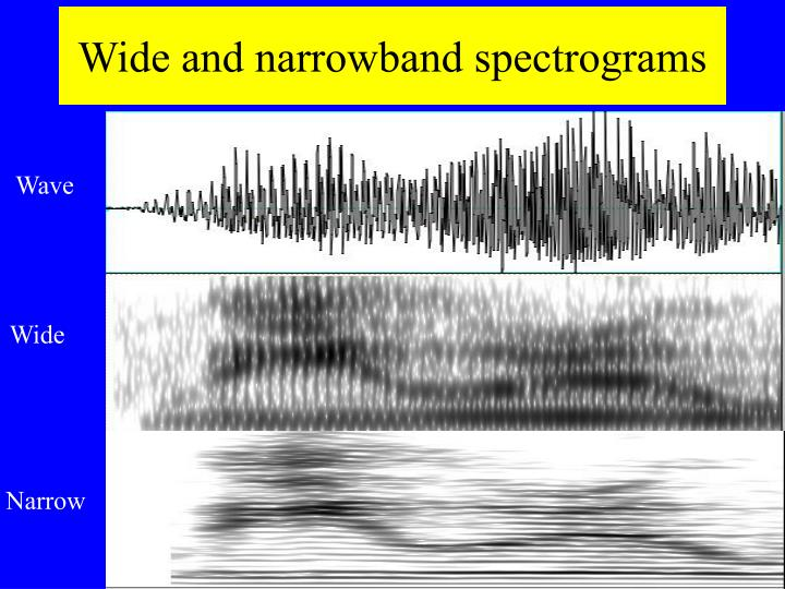 Wide and narrowband spectrograms