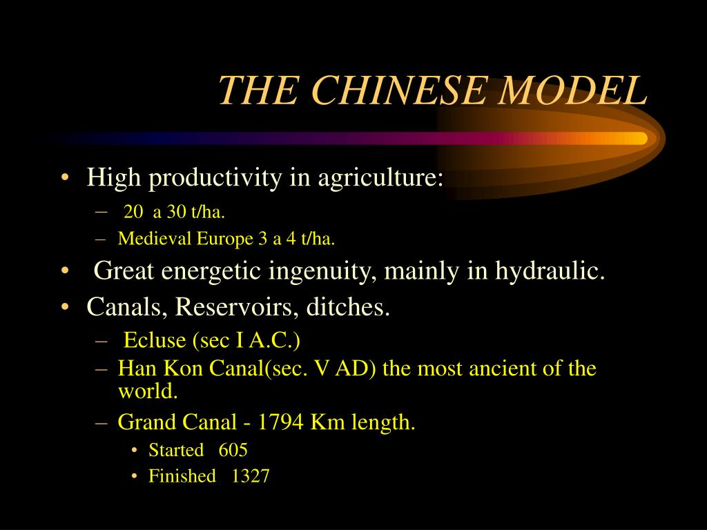 THE CHINESE MODEL