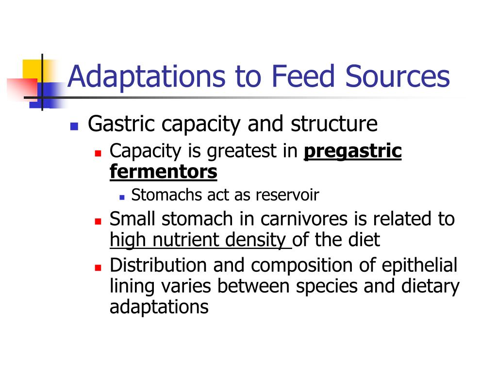 Adaptations to Feed Sources