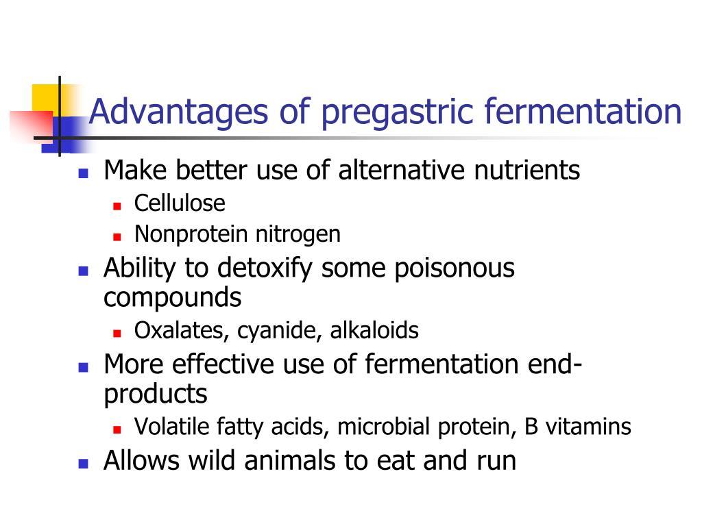 Advantages of pregastric fermentation