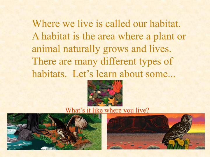 Where we live is called our habitat.  A habitat is the area where a plant or animal naturally grows ...