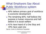 what employers say about public workforce system