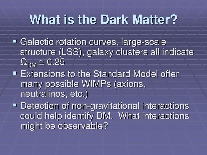 What is the Dark Matter?