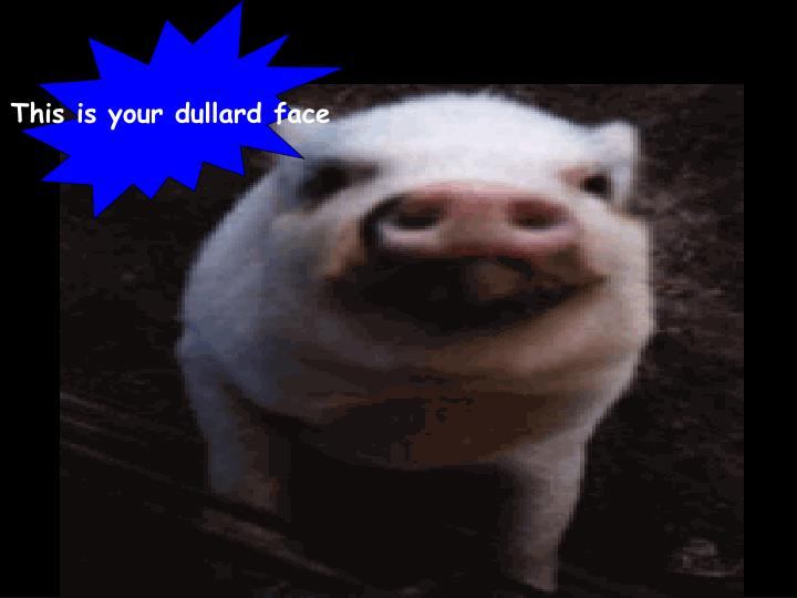 This is your dullard face